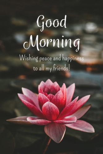 Good Morning. Wishing peace and happiness to all my friends.