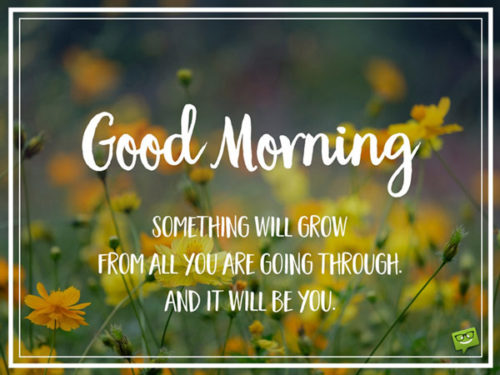 Good Morning. Something will grow from all you are going through. And it will be you!
