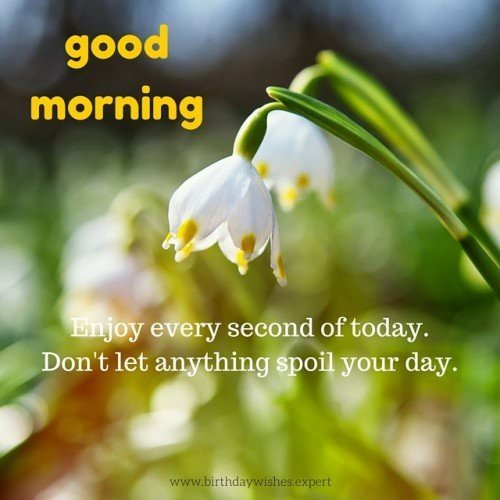 Good Morning. Enjoy every second of today. Don't let anything spoil your day.