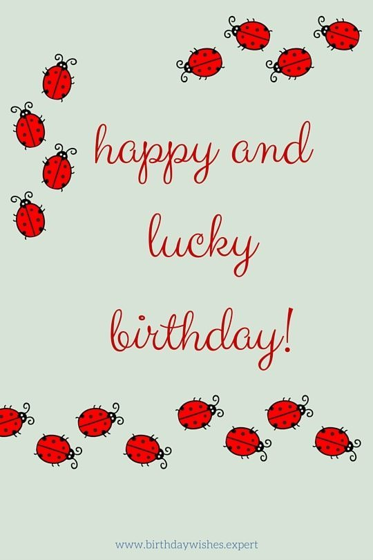 happy lucky birthday. Happy Birthday image with lady bug.