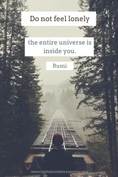 Do not feel lonely, the entire universe is inside you. Rumi.