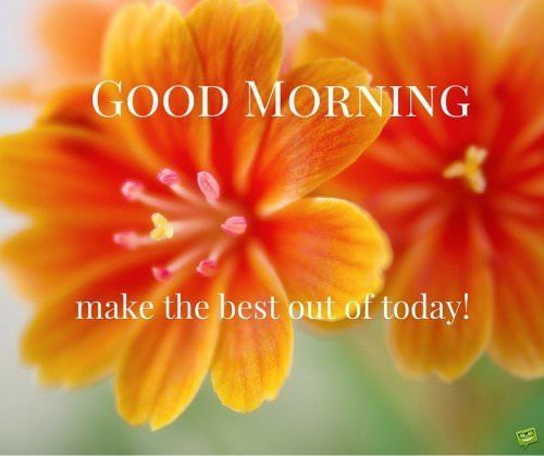 Good morning, make the best out of today!