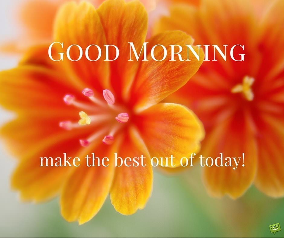 Good Morning Sunday Kiss Images : A smile from good morning image
