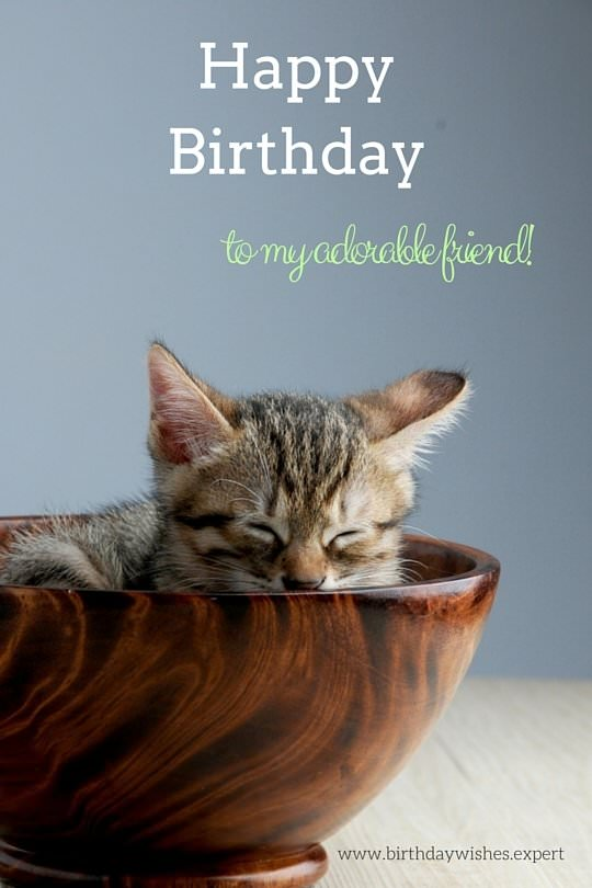 Awesome 200 Free Birthday Ecards For Friends And Family Part 5 Personalised Birthday Cards Veneteletsinfo