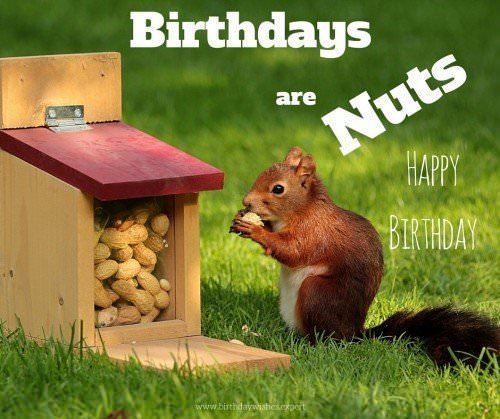 Happy Birthday. Birthdays are nuts
