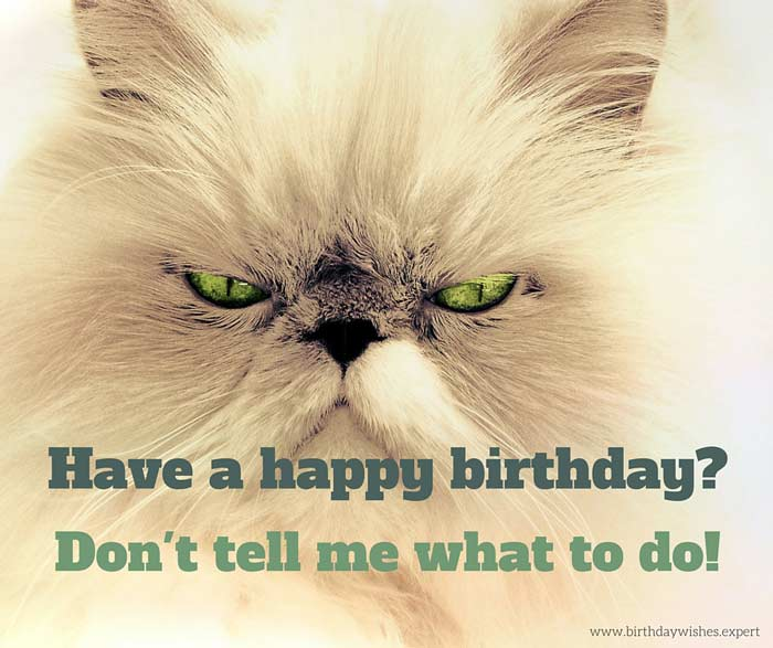 67 of the best birthday quotes for a very special day have a happy birthday dont tell me what to do m4hsunfo