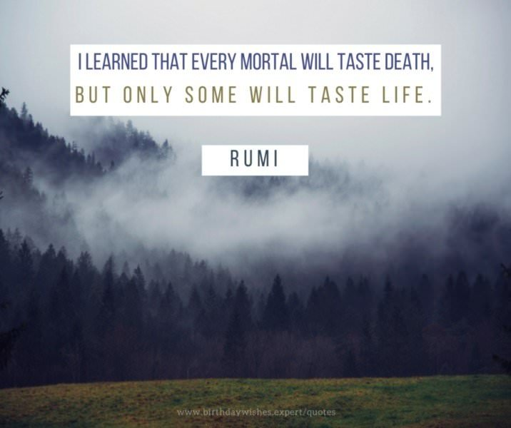 I learned that every mortal will taste death, but only some will taste life. Rumi.