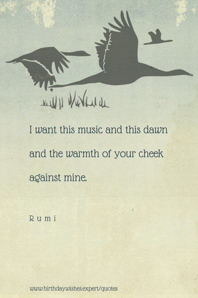 I want this music and this dawn and the warmth of your cheek against mine. Rumi.