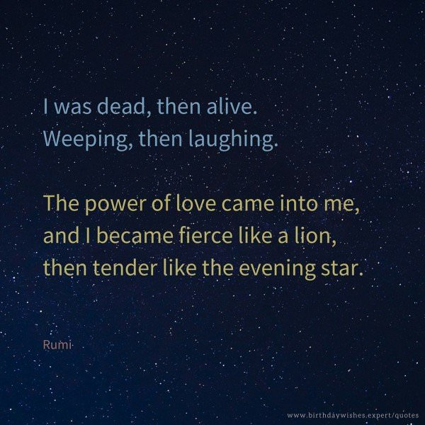 I was dead, then alive. Weeping, then laughing. The power of love came into me,and I became fierce like a lion,then tender like the evening star. Rumi.