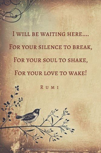 I will be waiting here....For your silence to break,For your soul to shake,For your love to wake! Rumi