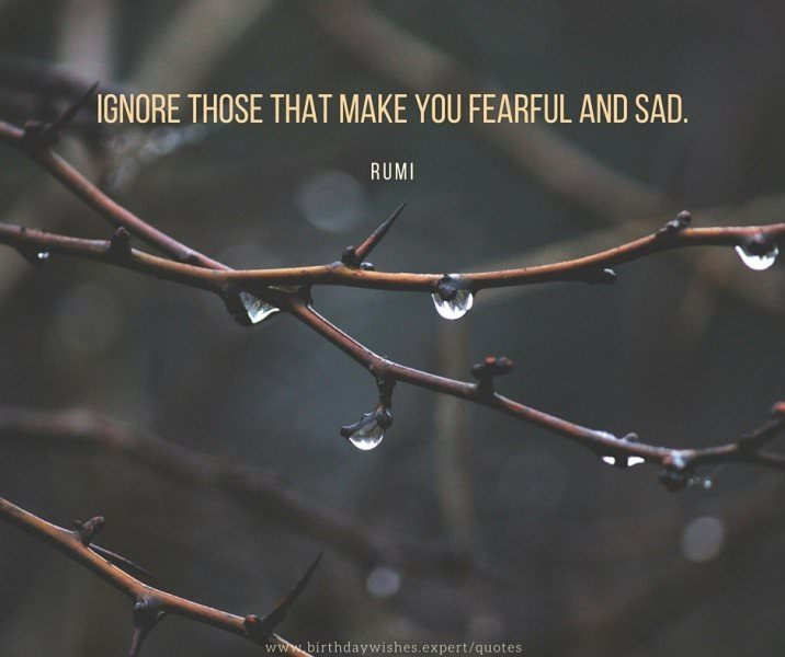 Ignore those that make you fearful and sad, that degrade you back towards disease and death. Rumi.