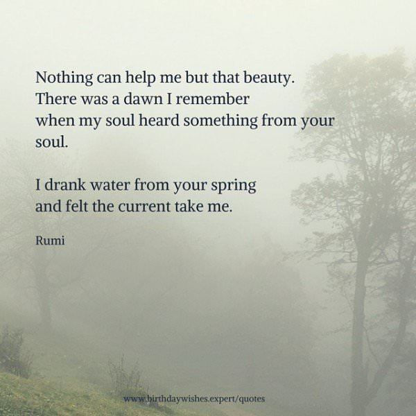 Nothing can help me but that beauty. There was a dawn I remember When my soul heard something from your soul. I drank water from your spring and felt the current take me. Rumi