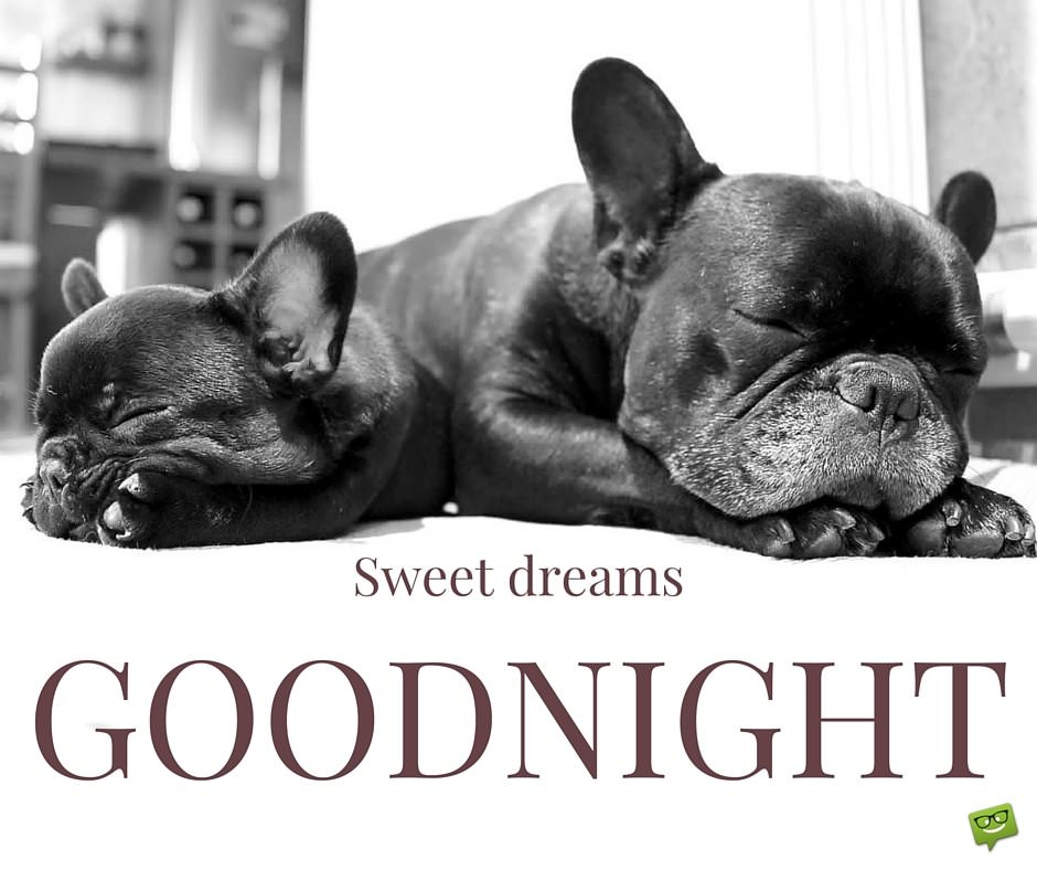 Goodnight, sweet dreams.