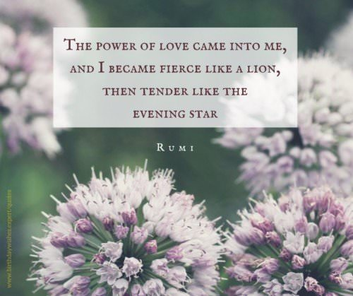The power of love came into me, and I became fierce like a lion, then tender like the evening star. Rumi.