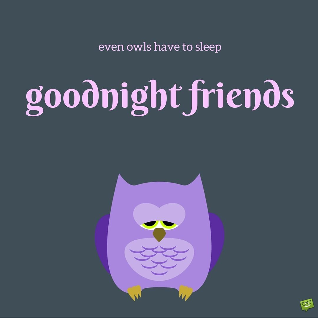 Even Owls Have To Sleep Goodnight Friends