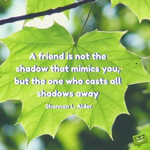 A friend is not the shadow that mimics you, but the one who casts all shadows away. Shannon L. Alder