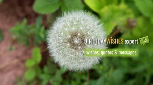 Wishes, Quotes & Messages