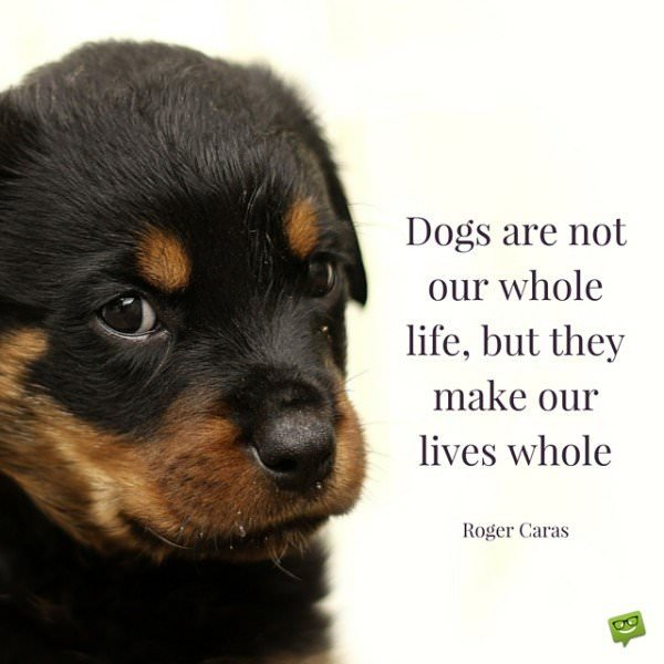 Dogs are not our whole life, but they make our lives whole. Roger Caras