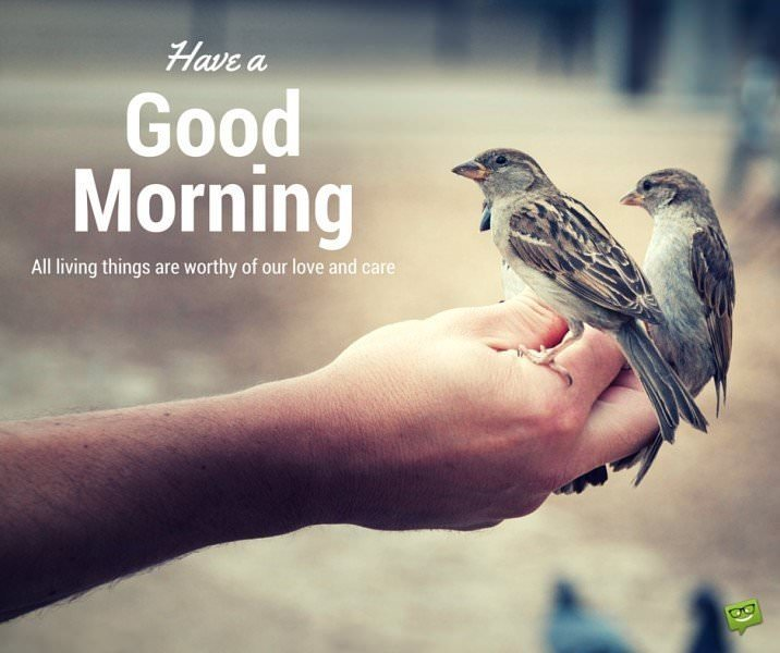 Have a Good Morning! All living things are worthy of our love and care.
