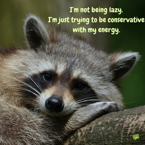 I'm not being lazy I'm just trying to be conservative with my energy.