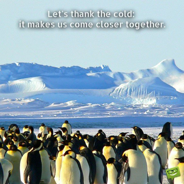 Let's thank the cold - it makes us come closer together.