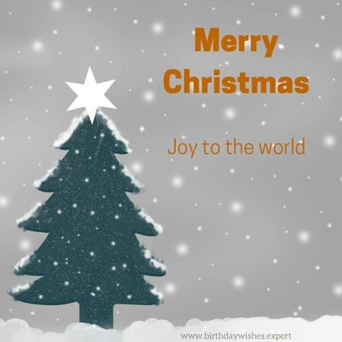 Merry Christmas! Joy to the World.