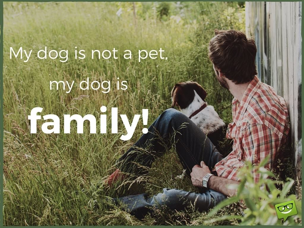 Dog Love Quotes 20 Dog Quotes For People Who Love Dogs