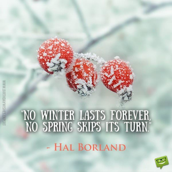 No winter lasts forever, no spring skips its turn. Hal Borland.