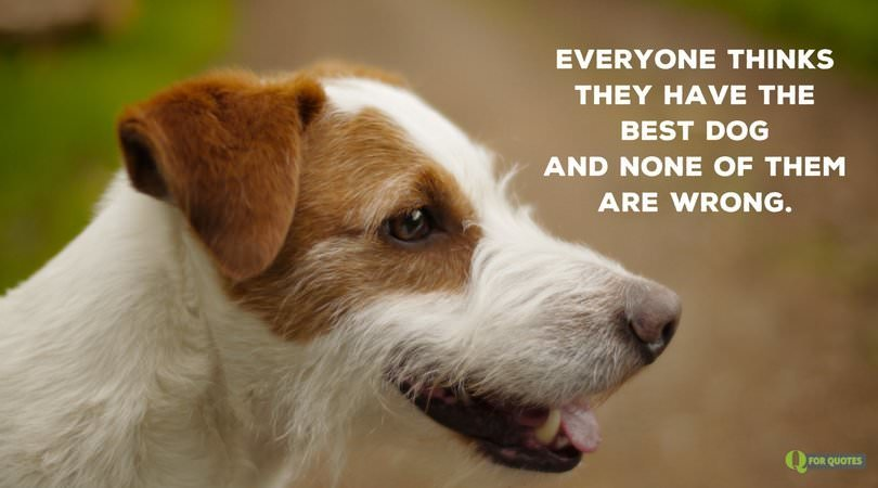 20 Dog Quotes For People Who Love Dogs