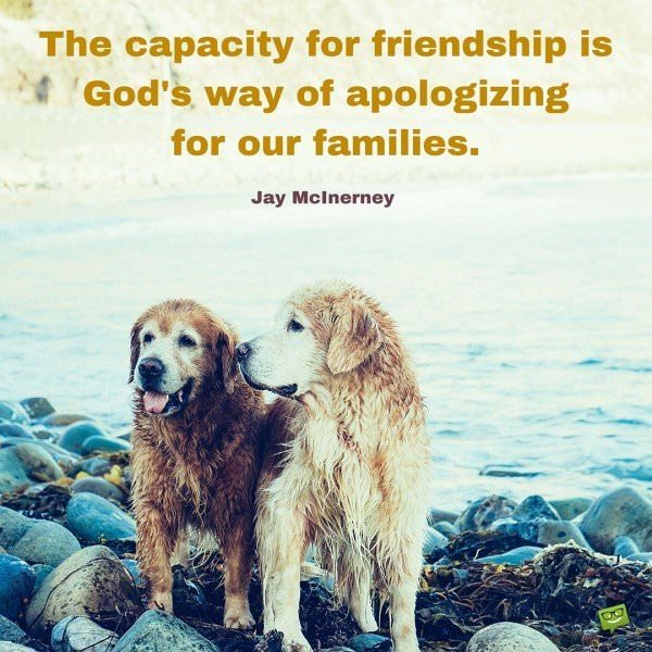 The capacity for friendship is God's way of apologizing for our families. Jay McInerney