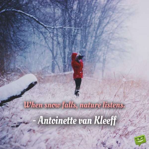 When snow falls, nature listens. Antoinette van Kleeff