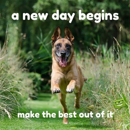 A new day begins. Make the best out of it.