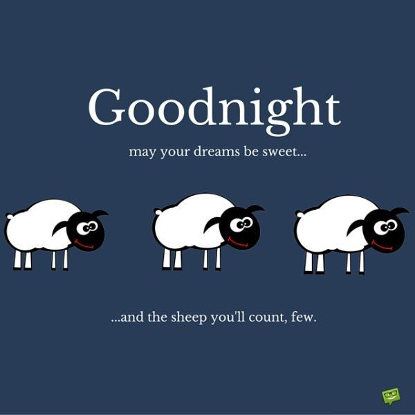 Good night. May your dreams be sweet... and the sheep you'll count, few.