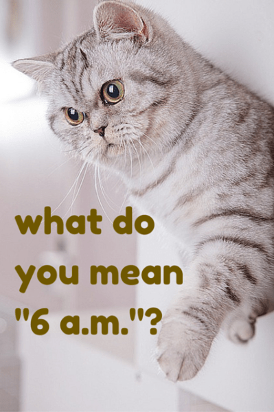 """What do you mean """"6 a.m.""""?"""