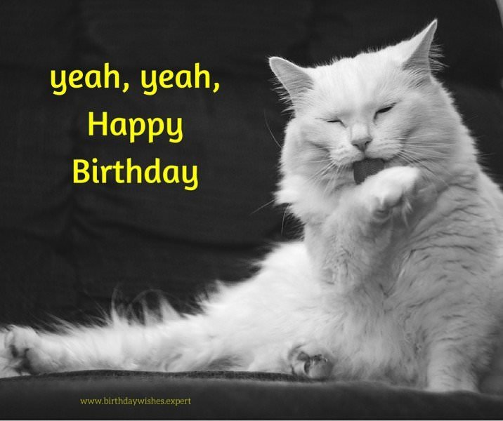 15 Cute Happy Birthday Images