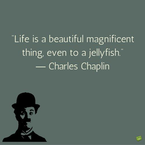 Life is a beautiful magnificent thing, even to a jellyfish. Charlie Chaplin