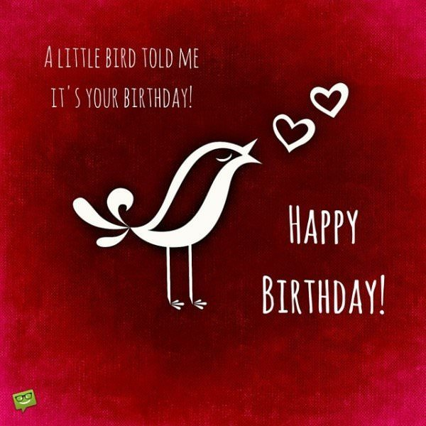A little bird told me it's your birthday! Happy Birthday!