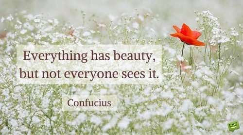 Everything has beauty, but not everyone sees it. Confucius.
