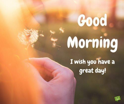 Good Morning. I wish you have a great day!