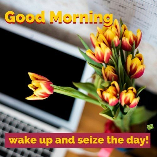 Good Morning. Wake up and seize the day!