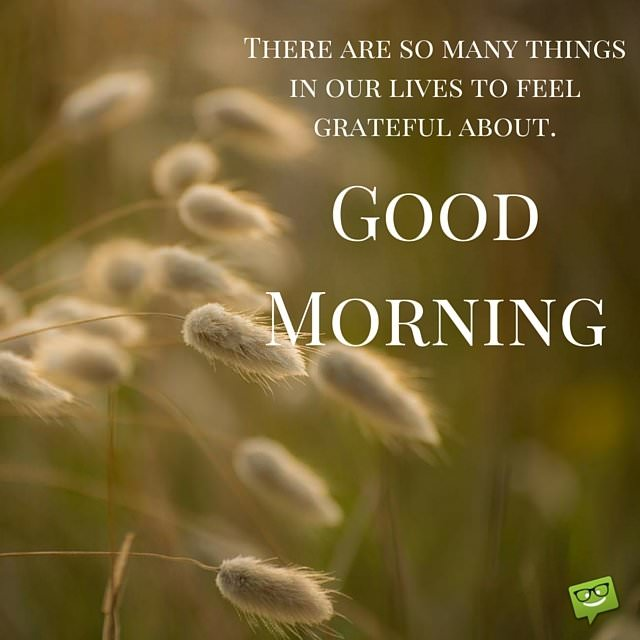 there are so many things in our lives to feel grateful about good morning