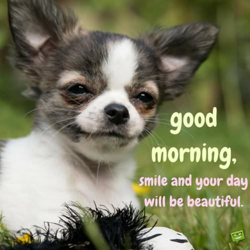 Good morning. Smile and your day will be beautiful.