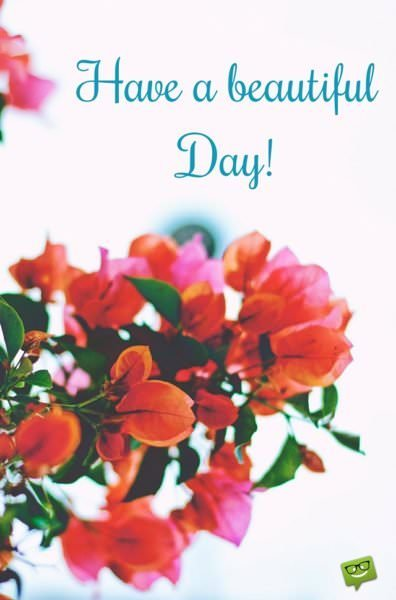 Have a beautiful Day!