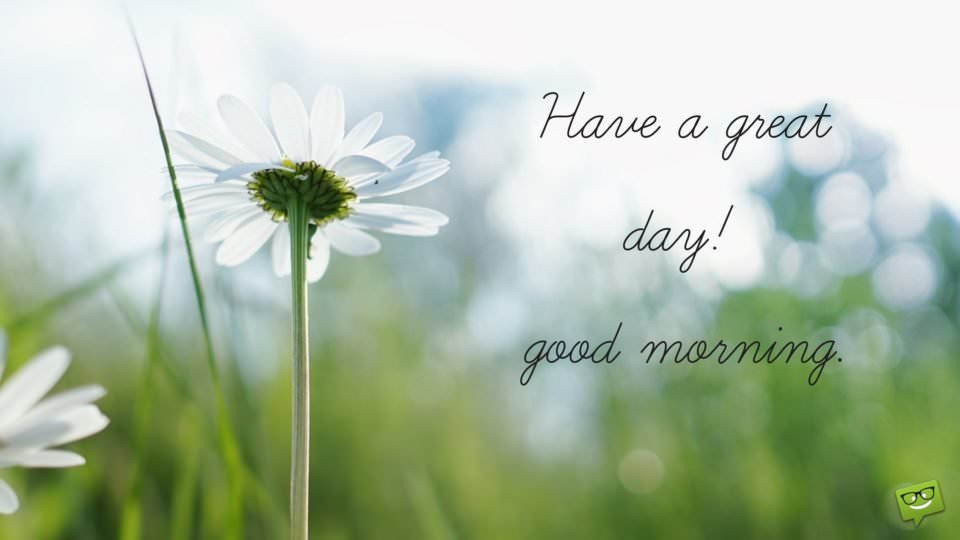 Have a great day. Good Morning!