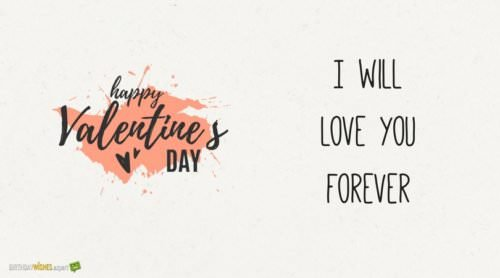 Happy Valentine's day. I will love you forever.