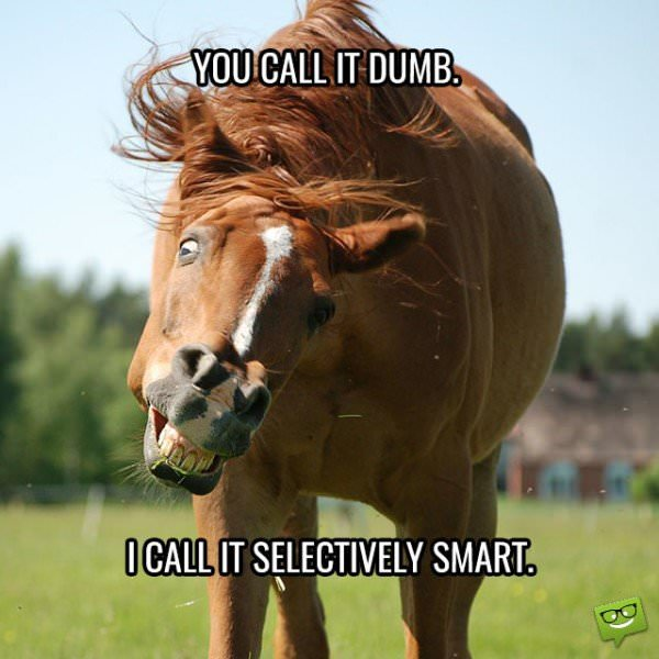 You call it dumb. I call it selectively smart.