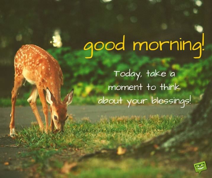 Good Morning. Today, take a moment to think about your blessings.