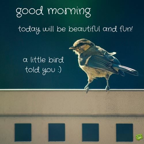 Good Morning! Today will be beautiful and fun. A little bird told you :)
