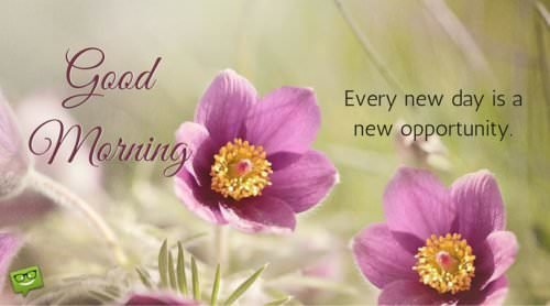 Every new day is a new opportunity. Good Morning.