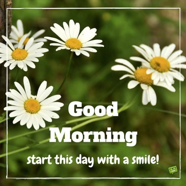 Good Morning image with daisies and quote.